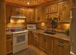 Log Home By Golden Eagle Log and Timber Homes - golden eagle log logs cabin home homes house houses rustic knotty pine custom design designs designer floor plan plans kit kits building luxury built builder complete package packages small cabin kit kitchen not in 10 doors cozy but deluxe high quality wood ceiling